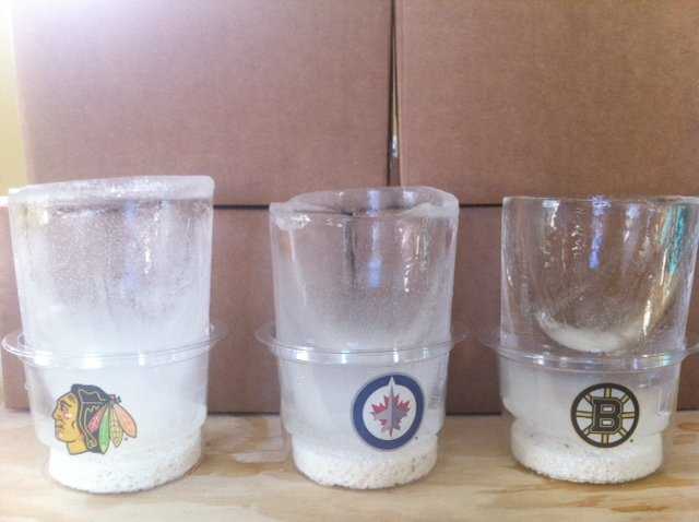 NHL clear and cloudy Chicago Blackhawks, Winnipeg Jets, Boston Bruins ice glasses
