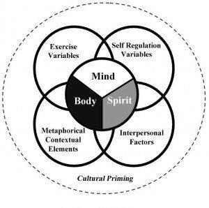 Sweat Therapy Theory