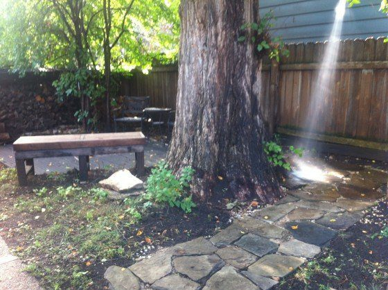 Outside my backyard sauna with outdoor shower and a misty garden all wet with rain.