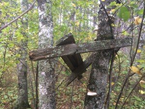 Deer stands of yesterday