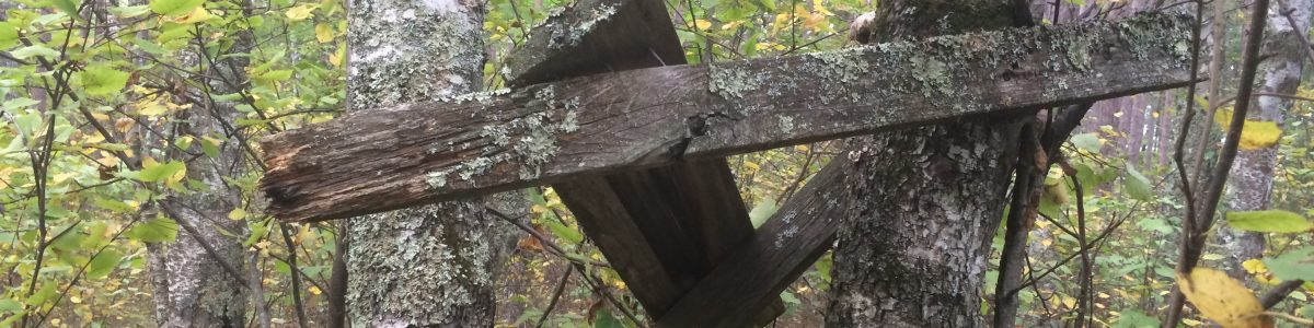 a simple deer stand representative of an old school authentic sauna