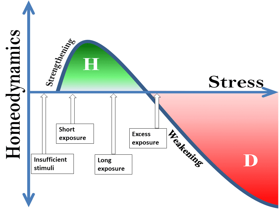 homeodynamics of stress